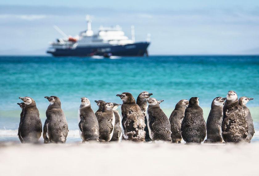 Îles Subantarticques - Antarctique et Îles Subantarticques dans le M/V Plancius/Janssonius (USH)
