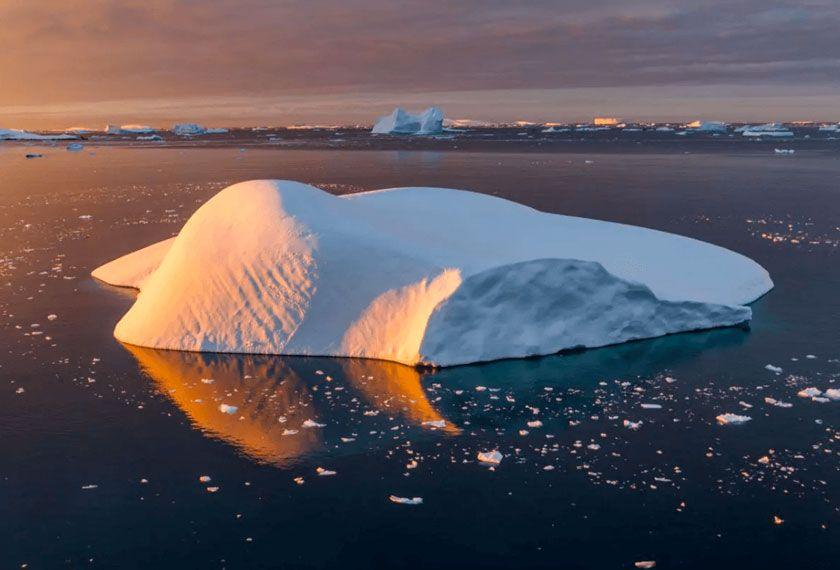 Îles Subantarticques - Antarctique et Îles Subantarticques dans le MV Plancius/Hondius (PMY)