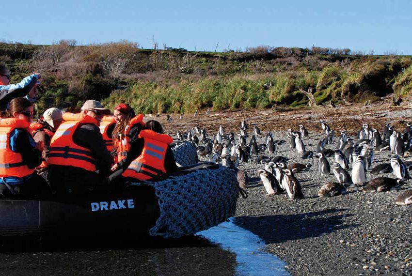 Australis Cruises - Australis 5 days <br />Fjords of Tierra del Fuego<br />Punta Arenas/Ushuaia