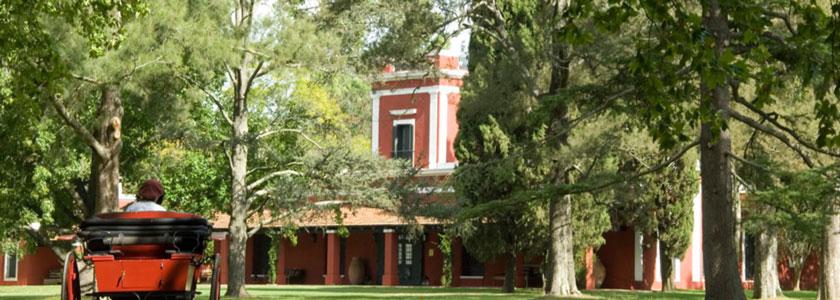 Feldtag in der Provinz Buenos Aires